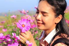 Close up face,caucasian woman and expression happiness,pretty girl with pink comos flowers stock photography