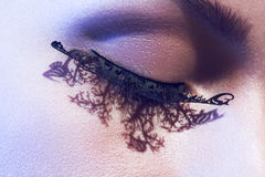 Close up face with glamour artificial lashes Royalty Free Stock Images