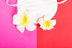 Close-up of face mask with exotic flowers. On red and pink background Royalty Free Stock Photos