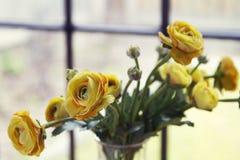Close up of fake yellow flowers horizontal Royalty Free Stock Photo
