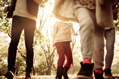 Close up of family legs in park. Focus is on legs stock image