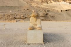Close-up of a famous Egyptian Sphinx in Luxor royalty free stock images