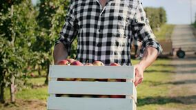 Close up of farmer carrying a full crate of apples