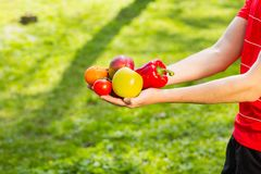 Close up of a farmer`s hands holding fruits and vegetables on the background of blurred greens royalty free stock images