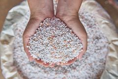 Close up chemical Fertilizer in sacks. Close up farmer woman hand hold chemical Fertilizer over fertilizer sacks Stock Image