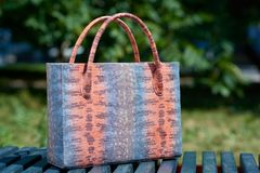 Fashionable colorful woman s bag with snake skin imitation Stock Images
