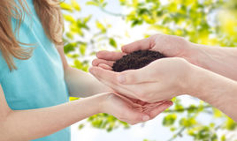 Close up of father and girl hands holding sprout Stock Image