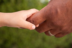 Close up of a father and son holding hands. Close up of a biracial father and son holding hands Stock Image
