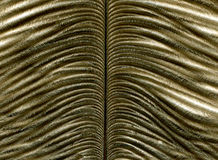 Close-up of feather Royalty Free Stock Photography