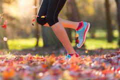 Close up of feet of female runner. Running in autumn leaves. Fitness exercise, low depth of focus stock photography