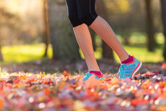 Close up of feet of female runner. Running in autumn leaves. Fitness exercise, low depth of focus royalty free stock photography