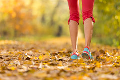 Close up of feet of female runner. Running in autumn leaves. Fitness exercise, low depth of focus royalty free stock images