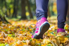 Close up of feet of a girl runner. Jogging by the autumn leaves in a park royalty free stock photos