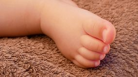 Close-up of feet of a newborn baby. stock footage