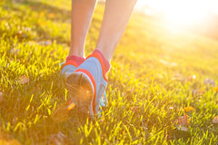 Close up of feet of a runner running in grass. Close up of feet of woman runner running in grass, concept of training exercise royalty free stock photography