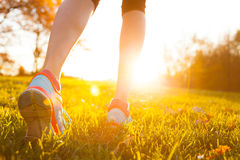 Close up of feet of a runner running in grass. Close up of feet of woman runner running in grass, concept of training exercise stock image