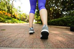 Close up of feet of runner running in park training for marathon and fitness healthy lifestyle. Selective focus stock photo
