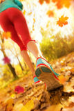 Close up of feet of woman runner in autumn. Close up of feet of woman runner running in autumn leaves, concept of training exercise royalty free stock photos