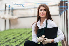 Close-up of female bio technician in greenhouse Stock Images