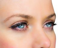 Close up of female blue eyes Stock Image
