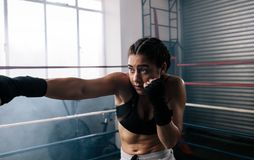 Female boxer training inside a boxing ring. Close up of a female boxer training inside a boxing ring. Boxer practicing her moves at a boxing studio Royalty Free Stock Photos