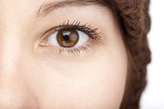 Close-up of an female brown eye royalty free stock images