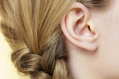 Close up on female ear and braid hair Stock Photo