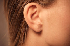 Close up on female ear. Detail of the head with female human ear and hair close up Stock Images