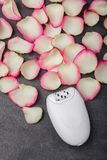 Close-up of a female epilator with rose petals. Close-up of a female epilator lies near pink rose petals, on a gray background. Depilation Royalty Free Stock Image