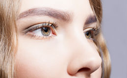 Close-up of female eyes makeup Stock Image