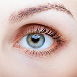 Close-up of female face with eye makeup Royalty Free Stock Photo