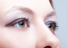 Close-up of female face with eyes makeup Stock Photos
