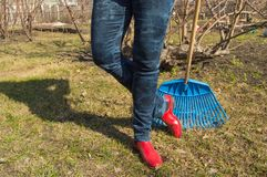 Close-up of female feet in blue jeans and red rubber boots with rakes, garden work. Close - up of female feet in blue jeans and red rubber boots with rakes Stock Photos