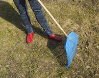 Close-up of female feet in blue jeans and red rubber boots with rakes, garden work. Close - up of female feet in blue jeans and red rubber boots with rakes Stock Photo