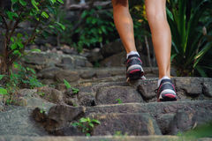 Close-up of female feet in sneakers walking. Outdoors Stock Image