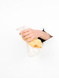 Female hand holding a liquid detergent container and a rag Royalty Free Stock Photography