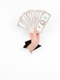 Female hand holding american money Stock Images