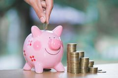 Close up female hand putting coin into piggy bank, save money for future.  royalty free stock photo