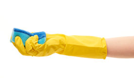 Close up of female hand in yellow protective rubber glove holding blue cleaning sponge Stock Image