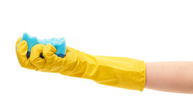 Close up of female hand in yellow protective rubber glove holding blue cleaning sponge Royalty Free Stock Photography