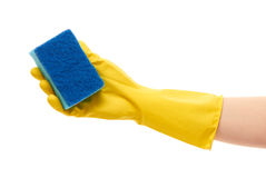 Close up of female hand in yellow protective rubber glove holding blue cleaning sponge against Stock Photo