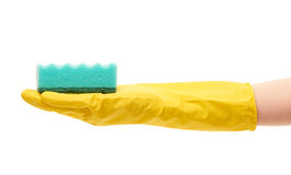 Close up of female hand in yellow protective rubber glove holding green cleaning sponge Royalty Free Stock Image