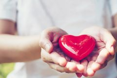 Close up female hands giving red heart on hands.  royalty free stock photography