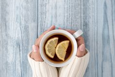 Female hands holding cup of tee royalty free stock images