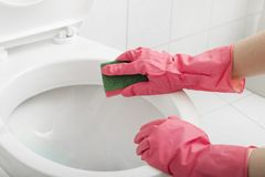Scrubbing toilet Stock Images