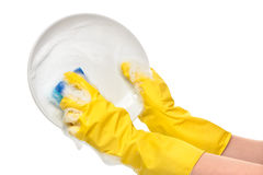 Close up of female hands in yellow protective rubber gloves washing white plate with blue cleaning sponge. Against white background royalty free stock photography