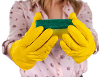 Close up female holding a cleaning sponge Royalty Free Stock Photography