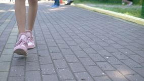 Close-up. female legs in stylish pink sneakers. girl walking on the street with pavement. Natural sunny daylight stock footage