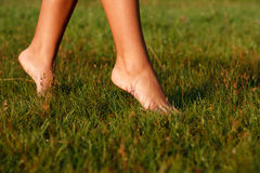 Close-up of female legs Royalty Free Stock Photography