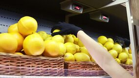 Close up of female worker in black gloves stocking the lemons in supermarket. Young employee at work. Curly female